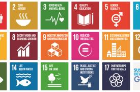 SDG graphic